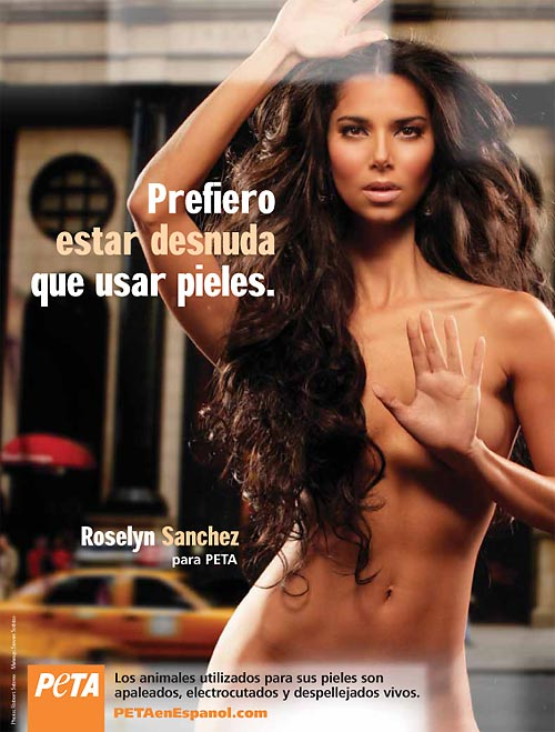 500-roselyn_sanchez.jpg